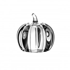 Crystal Spices Shaker Pumpkin 2049