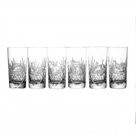 Crystal Engraved Long Drink Glasses Set of 6