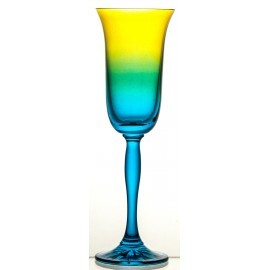 Coloured Champagne Glasses, Set of 6 (07741)